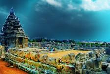 Tamil Nadu VAT Registration and VAT Filing