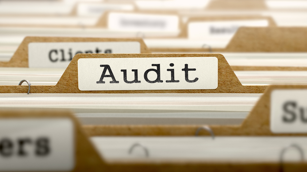Entrepreneurs Guide to Audit of aCompany