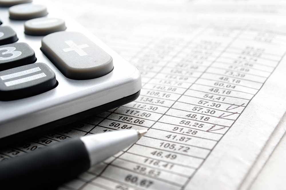 Statutory-Auditor-of-Company