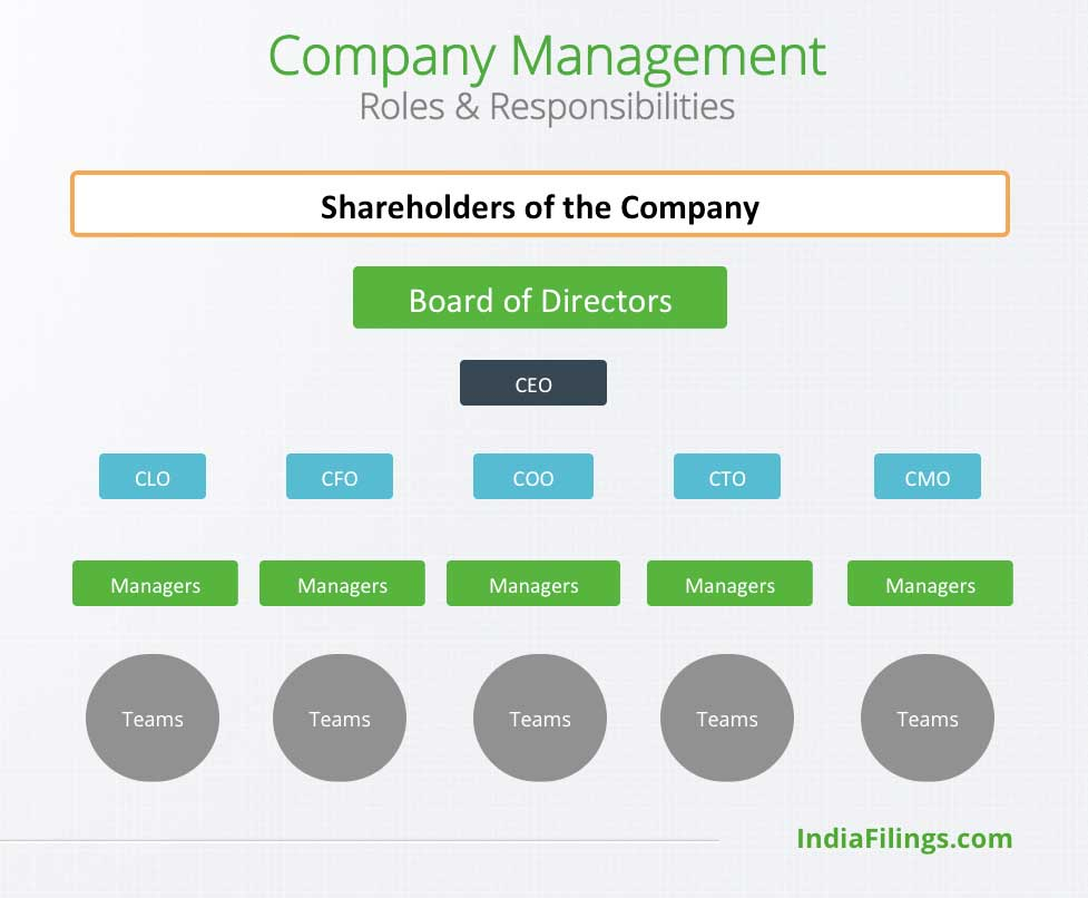 Company Management Structure
