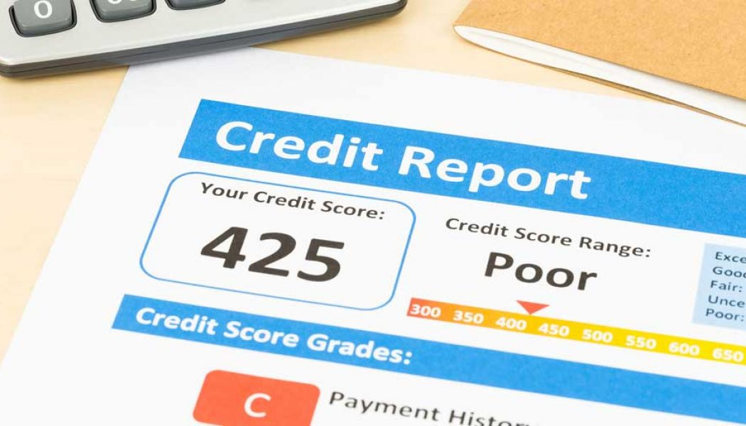 Image result for free credit report