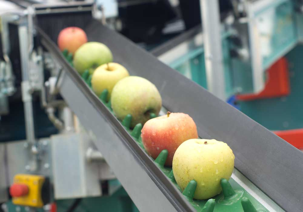Tax Exemption Food Processing Industry