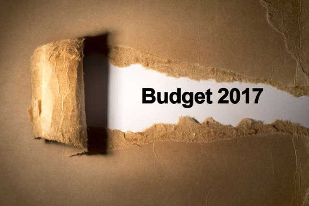 2017 Budget India