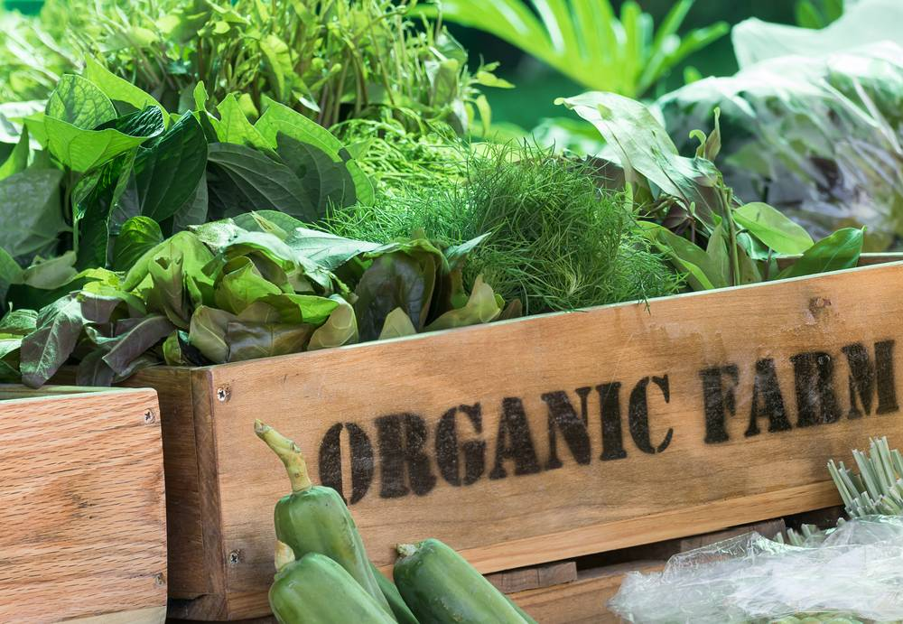 Organic-Farm-Certification
