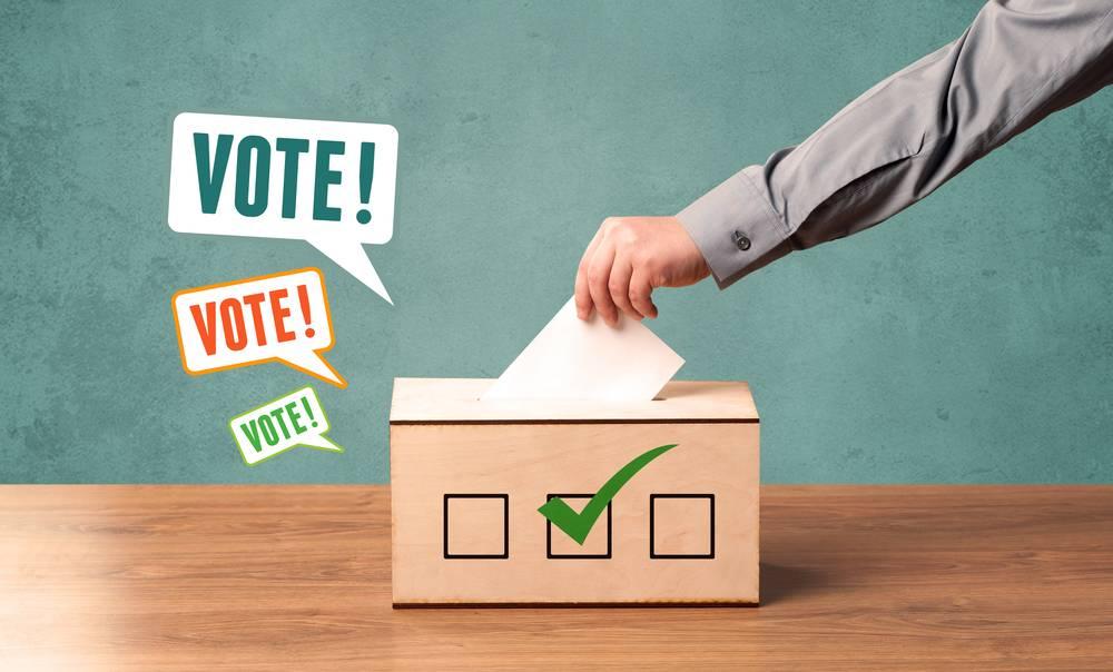 Voting by Postal Ballot