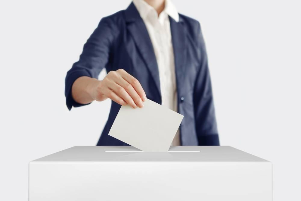 Electoral Trust Scheme