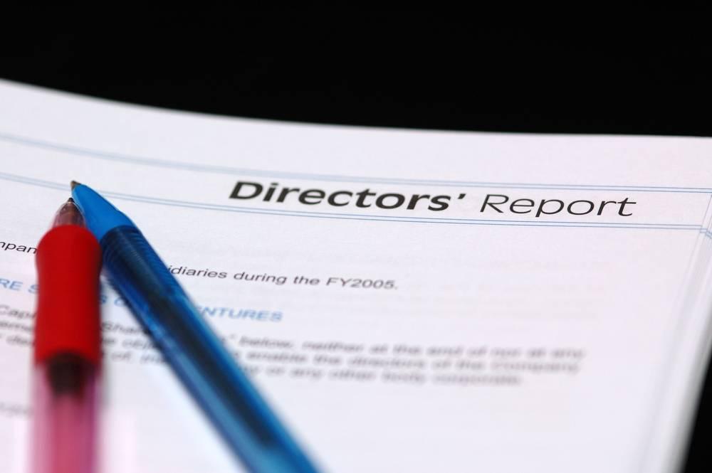 Directors Report Format