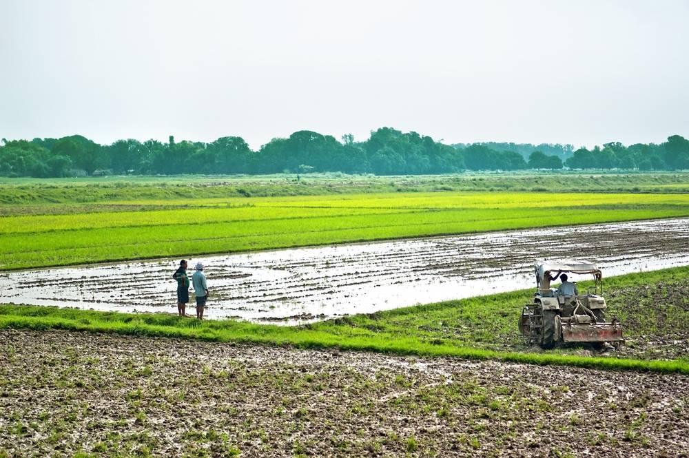 Webland-Telangana