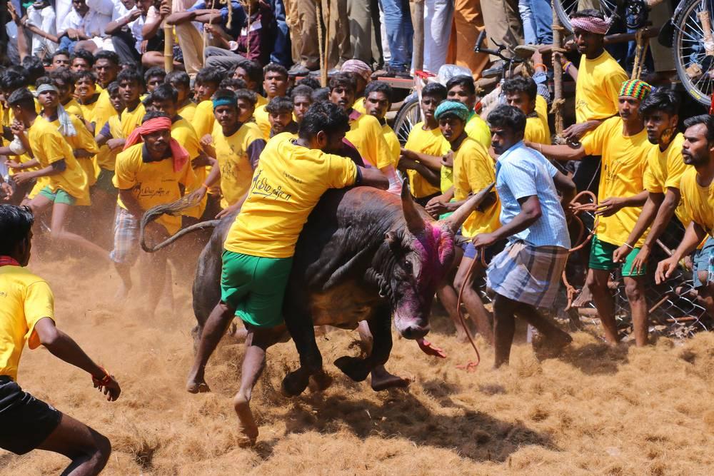Asombroso Tamil Nadu Government Birth Certificate Embellecimiento ...