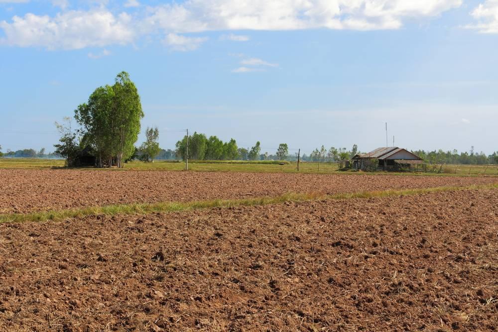 Land Conversion in Telangana - Application Procedure - IndiaFilings