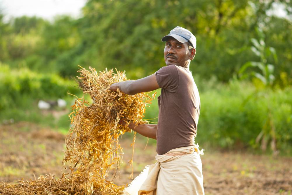 Rajasthan Farm Loan Waiver