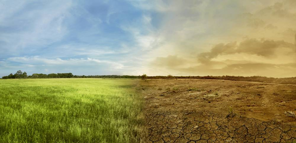 Climate Resilience Building Among Farmers
