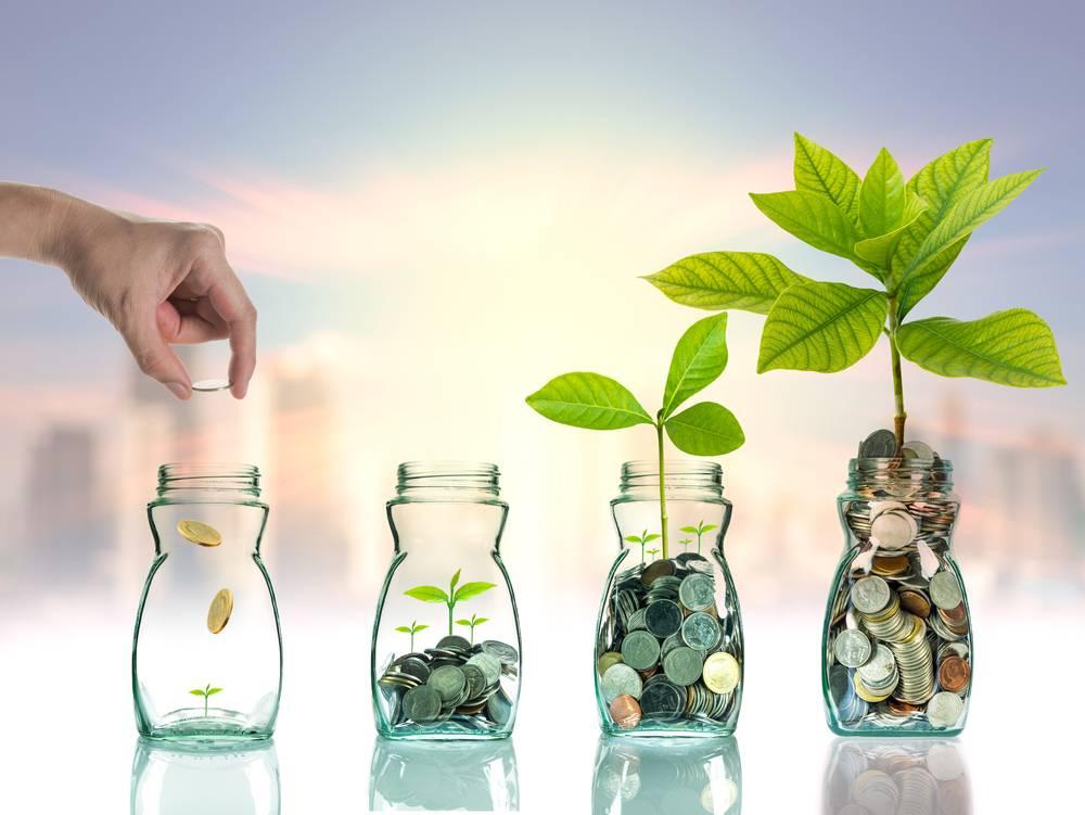 National Equity Fund Scheme