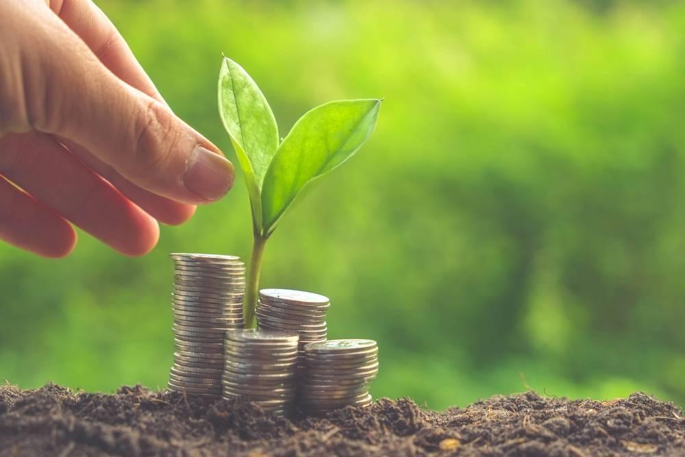Seed Money Scheme