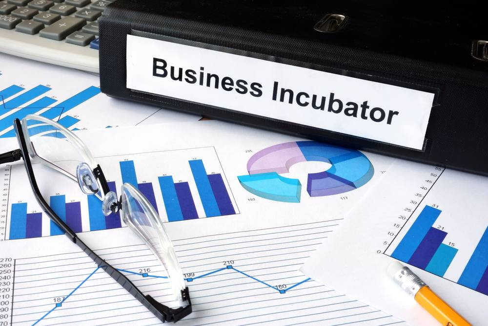 Incubation Scheme for MSMEs