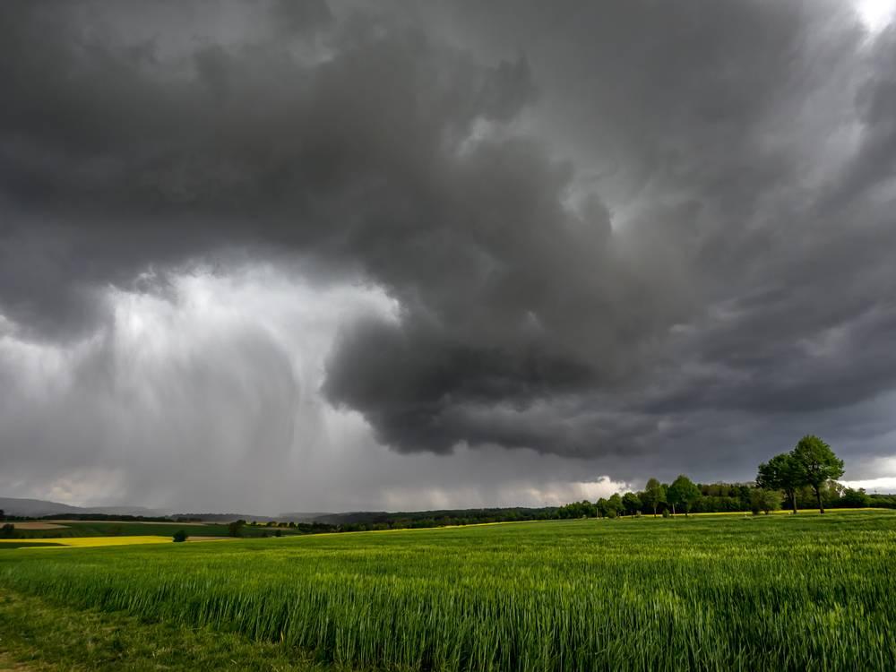 Weather Based Crop Insurance Scheme