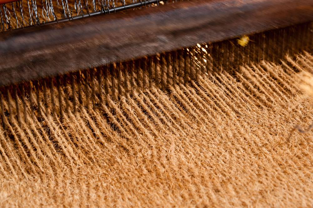 Insurance Scheme for Coir Workers