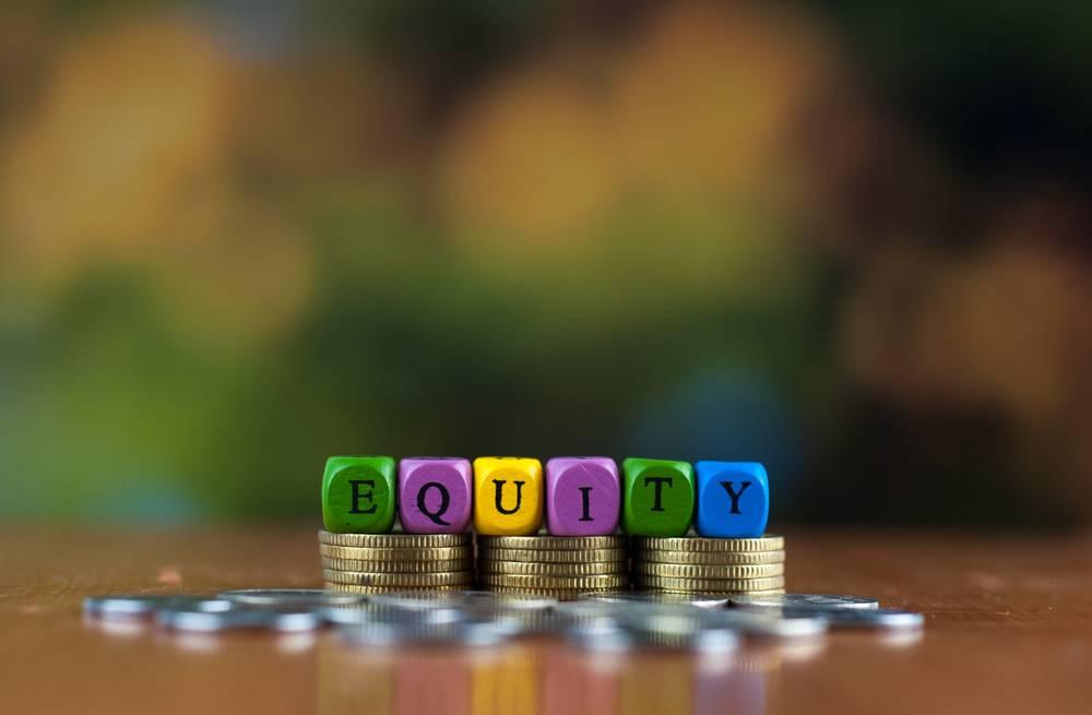 NEDFi Equity Fund Scheme