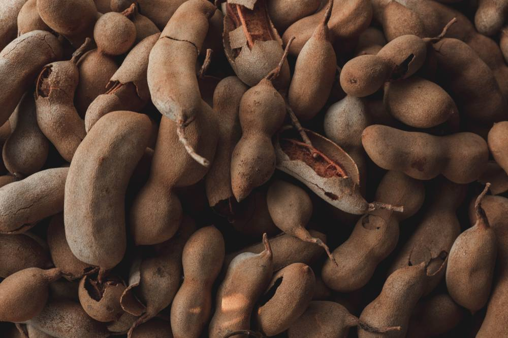 GST Exemption of Dried Tamarind