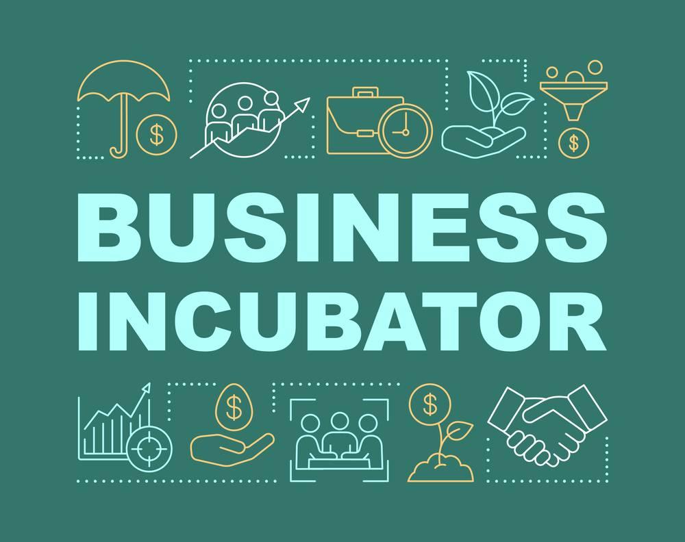 NSIC IT Incubator