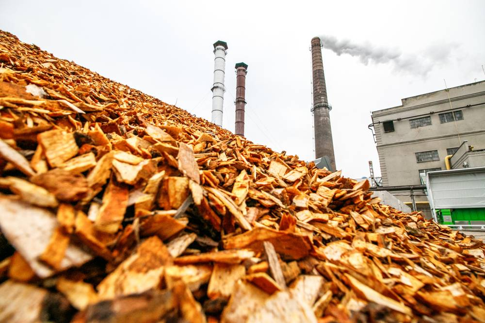 Scheme to Support Promotion of Biomass-Based Cogeneration