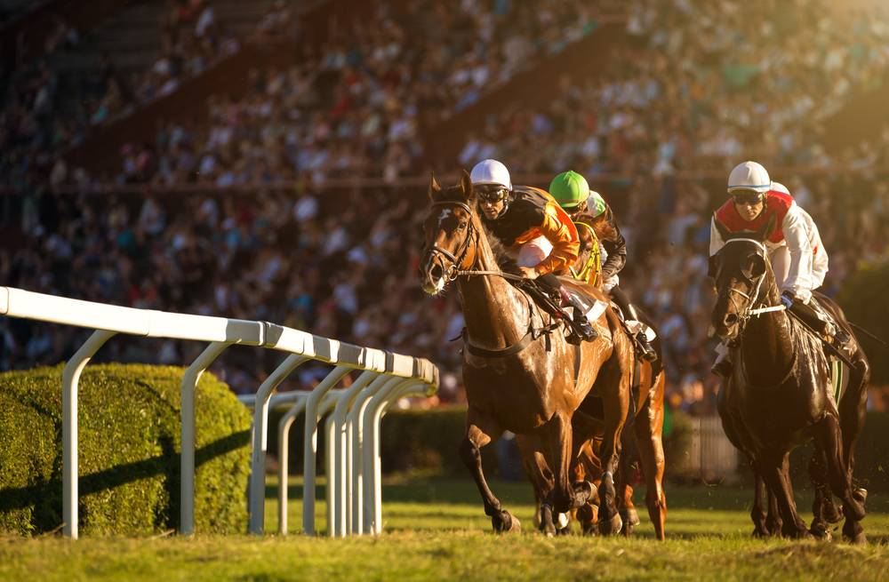 GST on Horse Racing